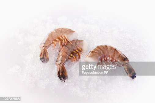 Black tiger prawns on ice