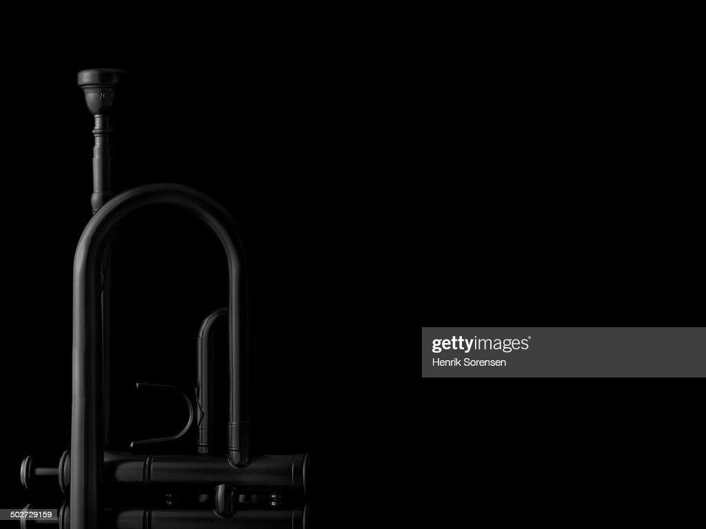 Black trumpet on black backdrop