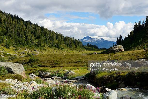 Black Tusk Viewed From Brandywine Meadows (Coast Mountains, British Columbia, Canada)