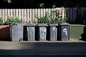 Black wheelie bins in a row on street with house numbers printed on front waiting for bin men to collect uk