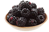 Blackberries In A Bowl Isolated