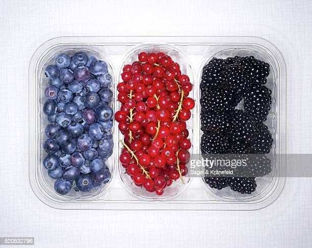Blackberries, Redcurrants and Blueberries in Plastic Container