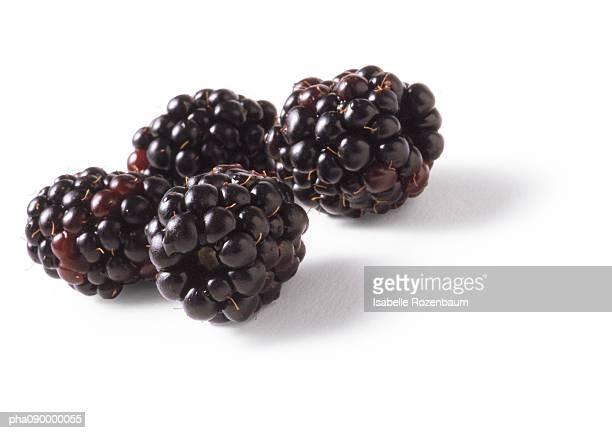 Blackberries, white background