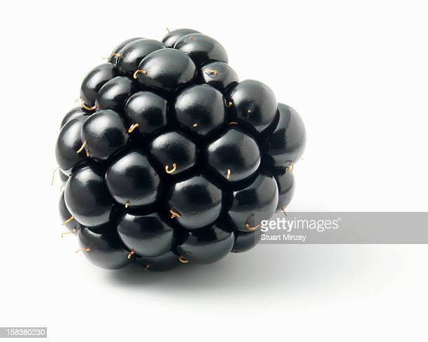Blackberry on white background
