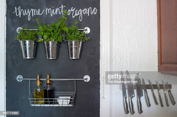 Blackboard wall with hanging garden in the kitchen in the one bedroom rental apartment of Shannon Claire Smith and Nicholas Herman in Washington DC...