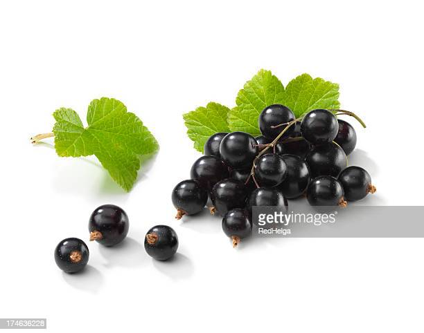 Blackcurrant bunch with Leafs