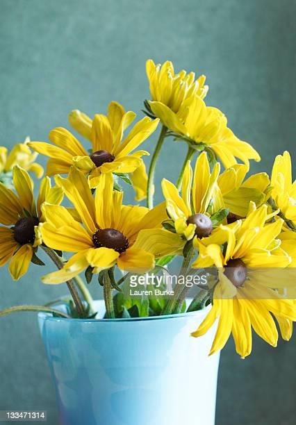 Black-eyed Susan Flowers in Vase
