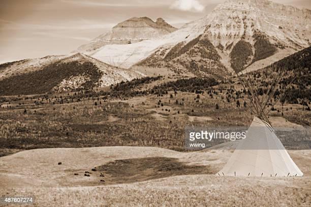 Blackfoot teepee La prairie con un bisonte mandria