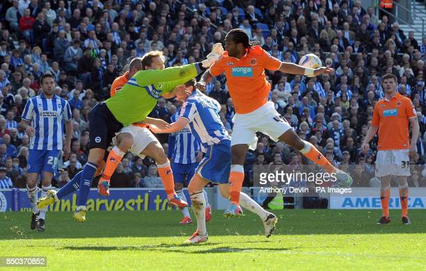 Blackpool's Nathan Delfouneso sees his effort saves by Brighton's Tomasz Kuszczak during the npower Football League Championship match at the AMEX...