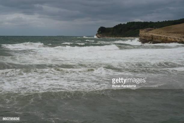Blacksea Coastal