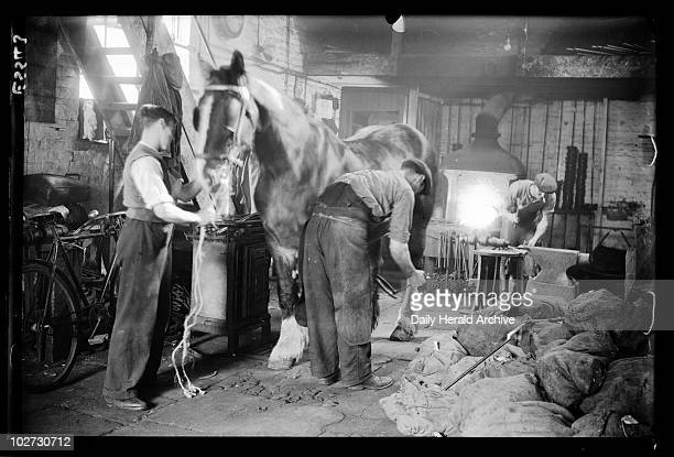 Blacksmiths at work 1935 A photograph of a busy blacksmith's workshop in Camberwell South London taken by George Woodbine for the Daily Herald...