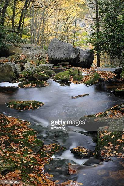 Blackwater Falls State Park in Fall