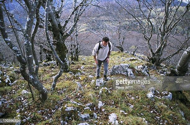 Blague valley Ariege Pyrenees France The slopes of Castle Segui