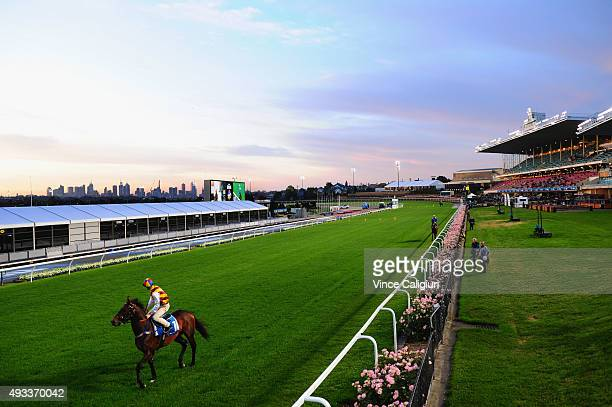Blake Shinn riding Preferment during the Cox Plate Breakfast With The Stars gallops at Moonee Valley Racecourse on October 20 2015 in Melbourne...
