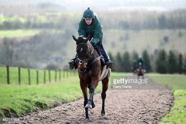Blaklion make their way up the gallops during a Nigel TwistonDavies Stable Visit at Grange Hill Farm on March 2 2017 in Naunton England