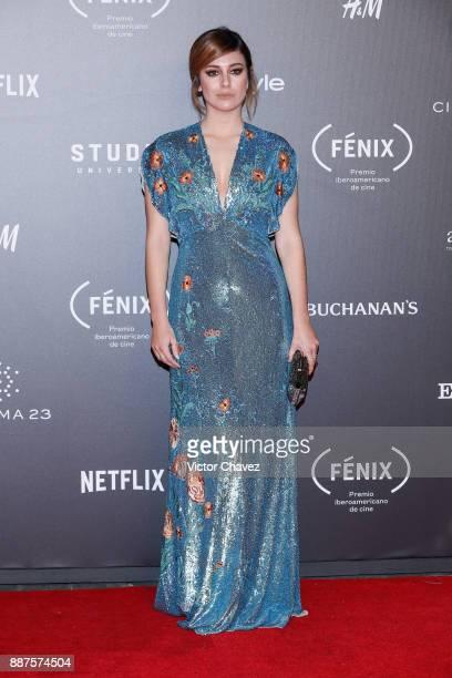 Blanca Suarez attends the Premio Iberoamericano De Cine Fenix 2017 at Teatro de La Ciudad on December 6 2017 in Mexico City Mexico