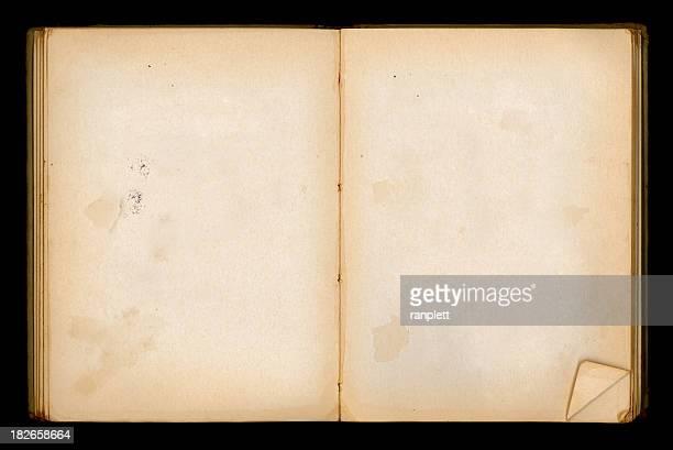 Vierge Vieux livre