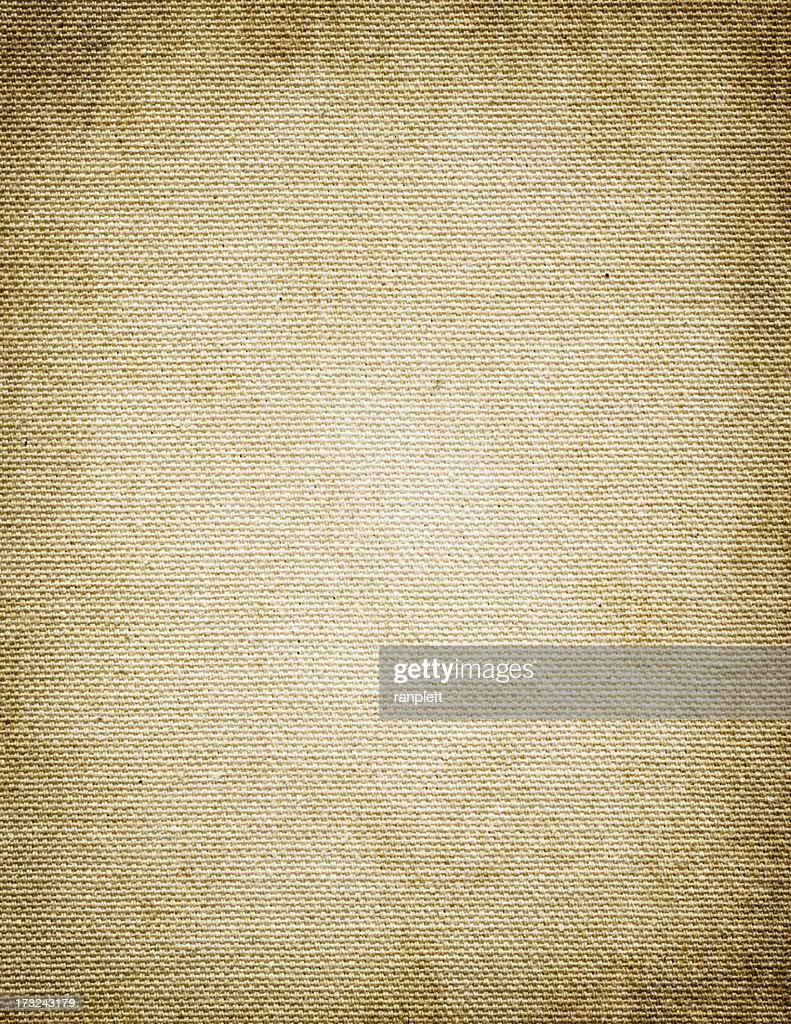 Blank Grungy Canvas Background