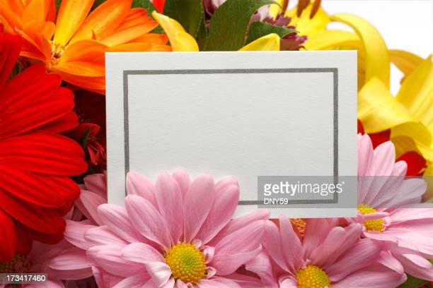 空白の母の日カード