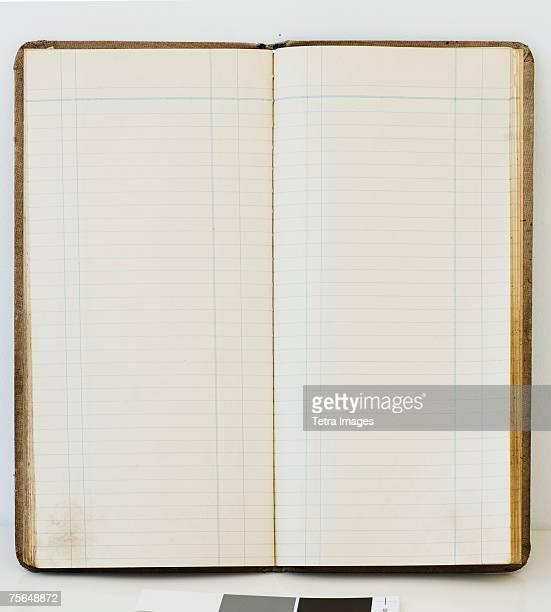 Blank open ledger book