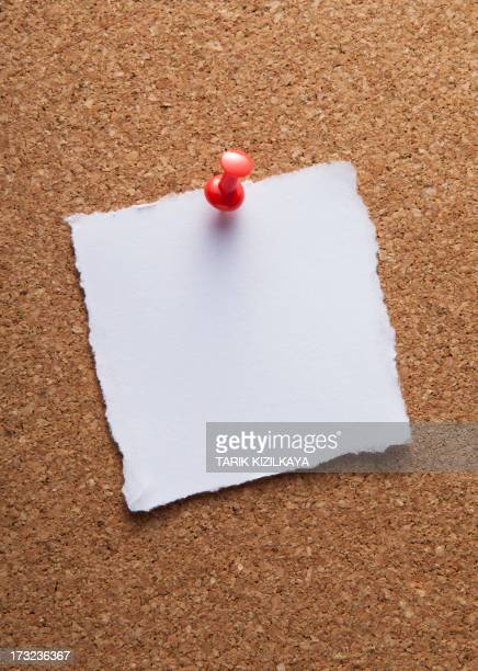 blank white note paper on cork board