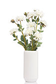 Blank white vase with flowers bouquet design on white background.