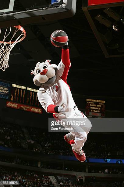 Blaze the mascot of the Portland Trail Blazers dunks against the Golden State Warriors during a game on April 15 2006 at the Rose Garden Arena in...