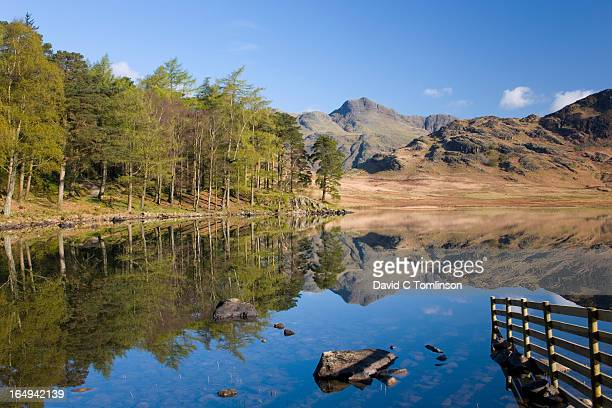 Blea Tarn, Lake District, Cumbria, England
