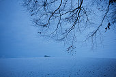 A bleak landscape of cold English fields and bare trees during wintry conditions in North Somerset Blue light tells us of a chilly day during a...