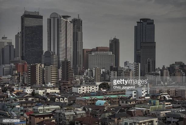Bleak Shinjuku Skylin