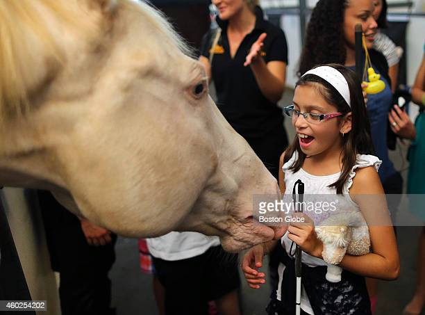 Blind and visually impaired youth from the greater Boston area go behind the scenes and have a sensory tour of the horses and meet performers of...