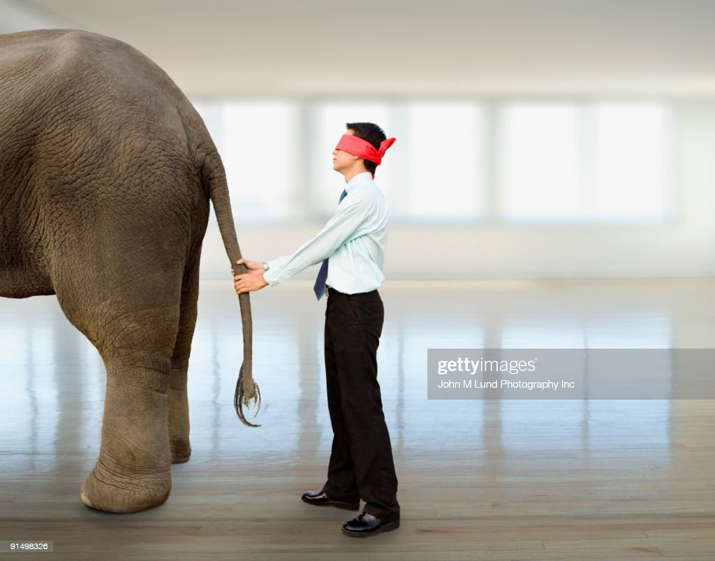 Blindfolded Asian businessman holding elephant's tail : Stock Photo
