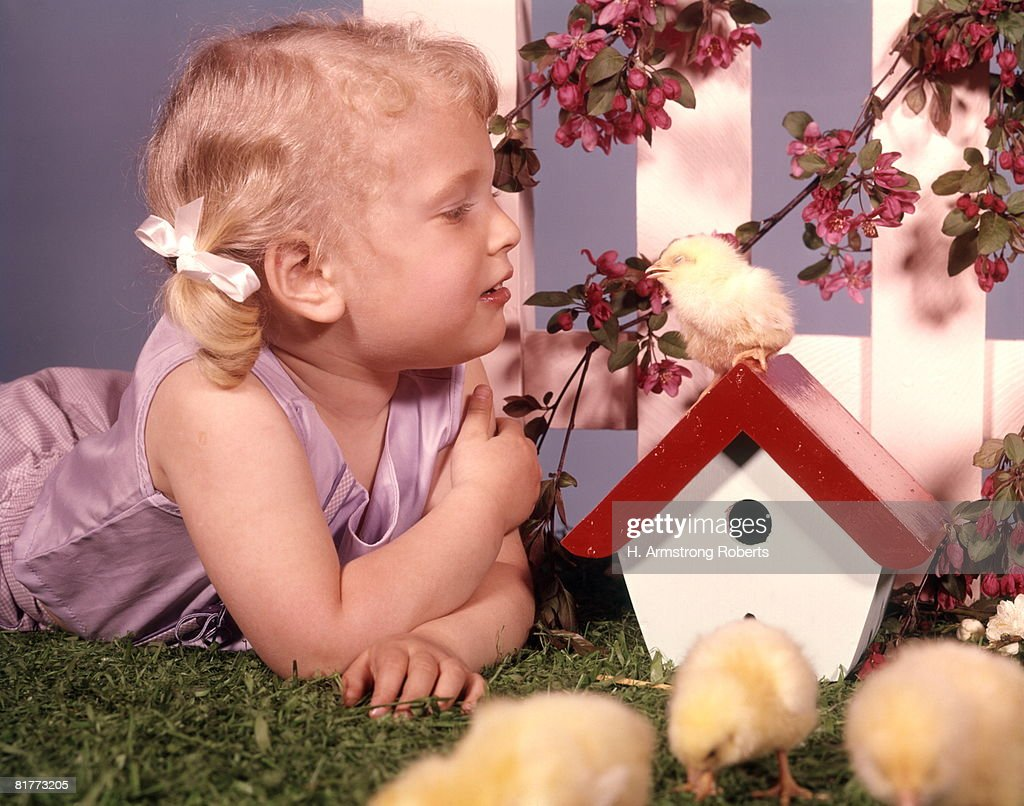 Blond Blonde Girl Playing With Baby Chicks Bird House White Fence Spring Blossoms Easter. : Stock Photo