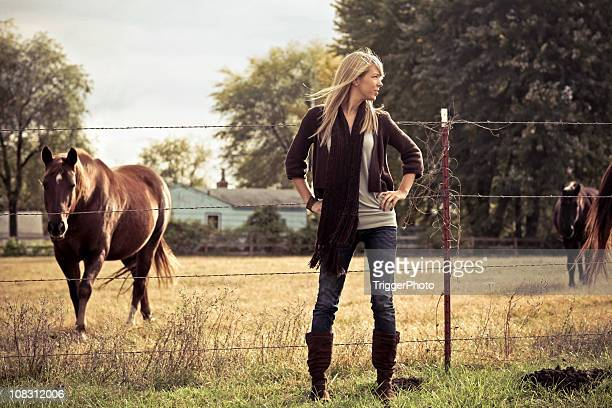 blonde horses