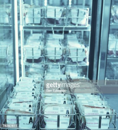 Blood bank : Stock Photo