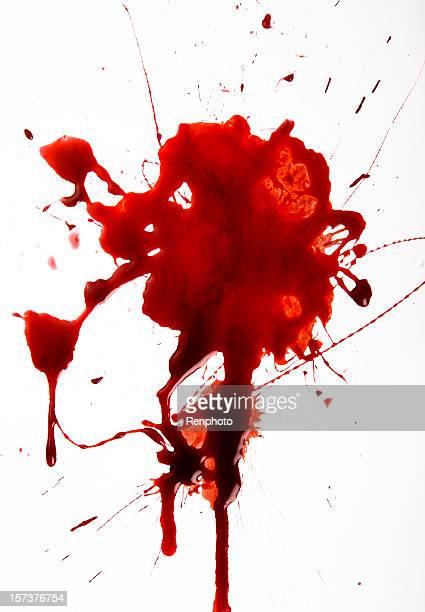 Splat di sangue su sfondo bianco
