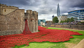 Blood Swept Lands and Seas of Red The Tower of London remembers the First World War