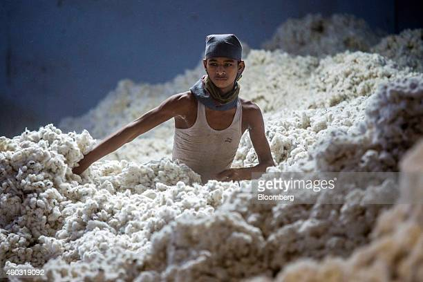 Bloomberg's Best Photos 2014 A worker wades through cotton at a ginning mill in Pilibanga Rajasthan India on Wednesday Nov 5 2014 India may topple...