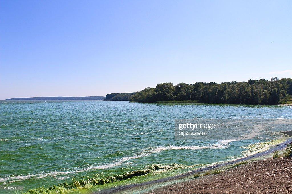Blooming green water in reservoir on Dnieper river : Foto de stock