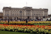 Blossom and spring flowers bloom in front of Buckingham Palace before the Royal Wedding on April 15 2011 in London England Stands media facilities...