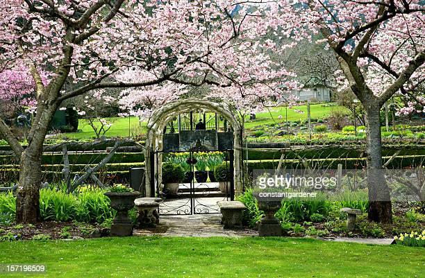 Blossom Arbour