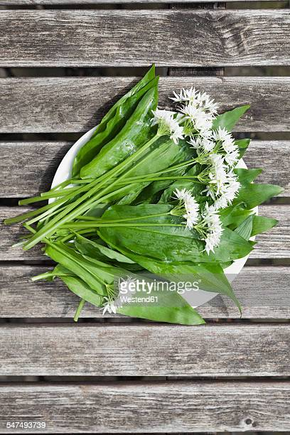 Blossoms and leaves of wild garlic on plate