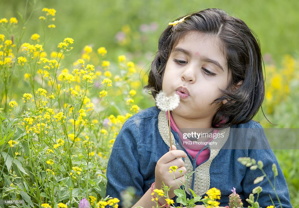Blowing dandelions : Stock Photo