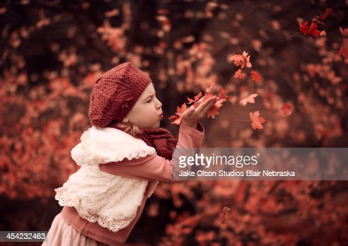 Blowing Leaves : Stock Photo