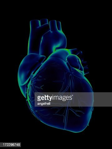 Blue and green human heart on black background