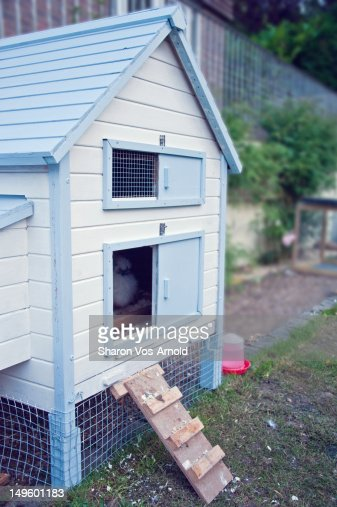 Blue and white beach hut style chicken coop stock photo for Beach hut style