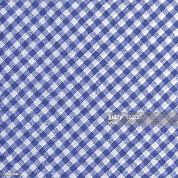 blue and white gingham fabric