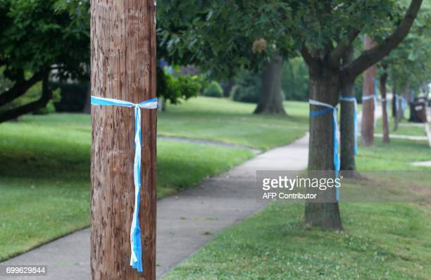 Blue and white ribbons are seen on one of the streets in Wyoming Ohio on June 22 before the funeral of Otto Warmbier Warmbier an American university...