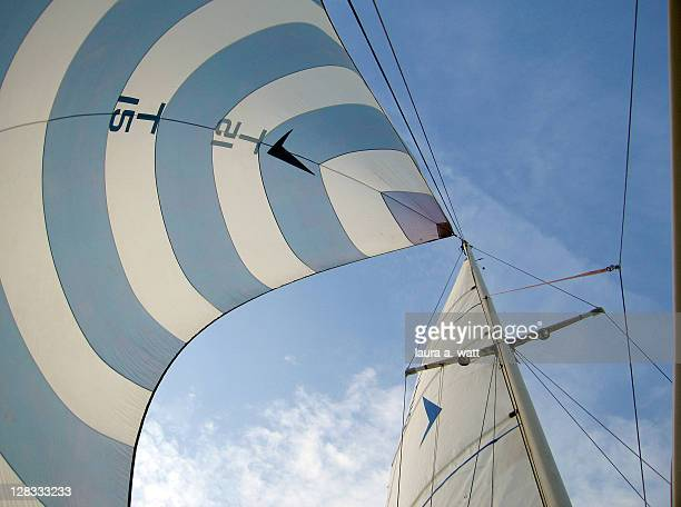 Blue and white spinnaker