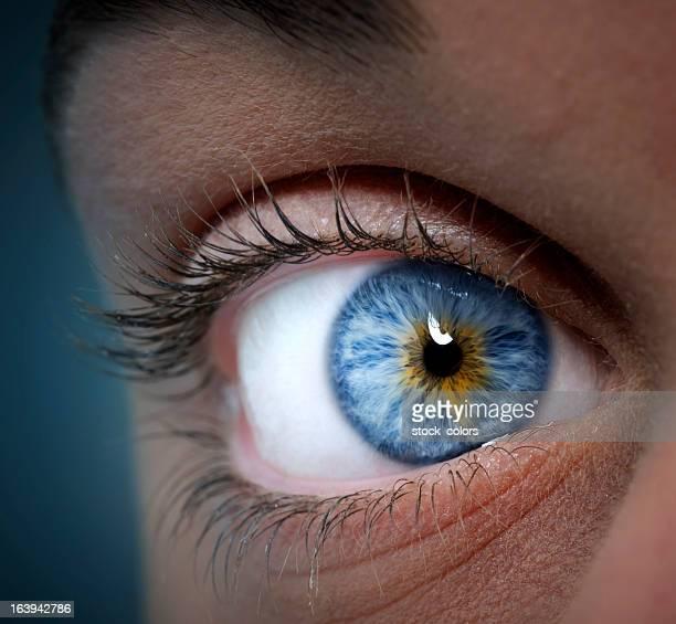 Blaue und gelbe eye